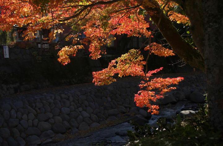 修善寺-765-1