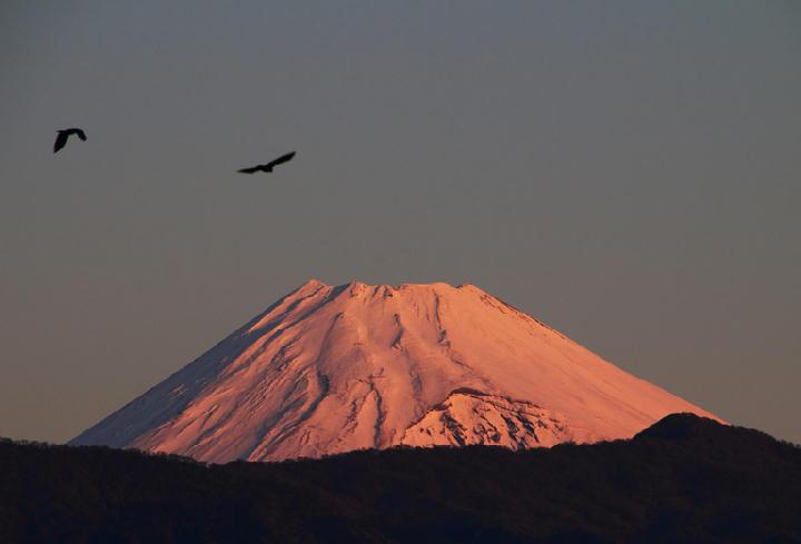 12月19 6-48 今朝の富士山-1