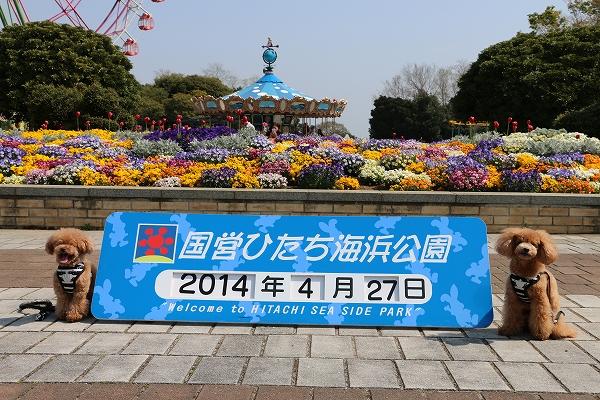 20140502-1.jpg