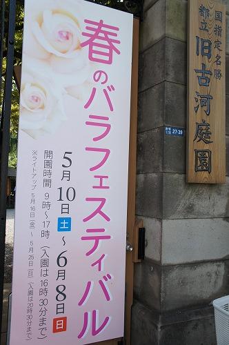 20140701-6.jpg