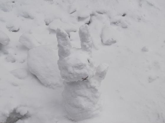 ウサギ+(1)_convert_20140316161001