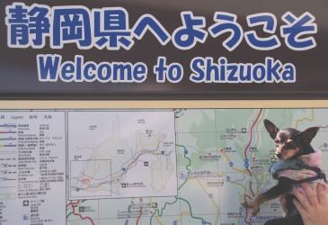 静岡まで帰ってきたど~