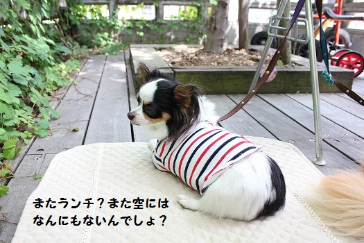 IMG_9004え