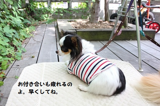 IMG_9005え