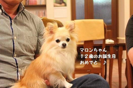 IMG_9762え