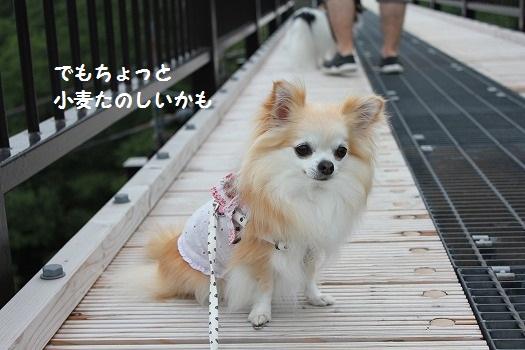 IMG_9805え