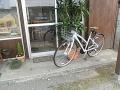 オシャレ自転車1