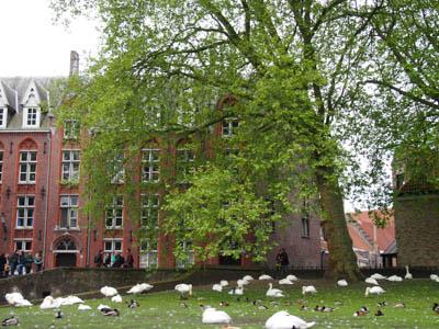 Brugge201440