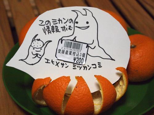 20140507mitsukankomi-9.jpg