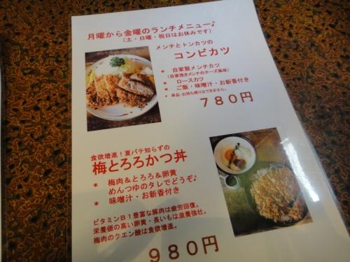 20140801Hayashi_ya-3.jpg