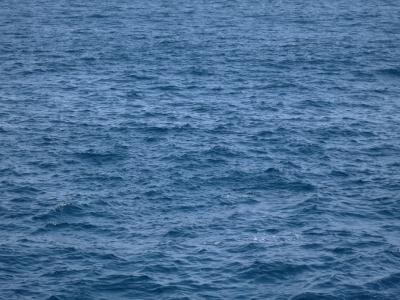 140513-731=海面fmマタビ