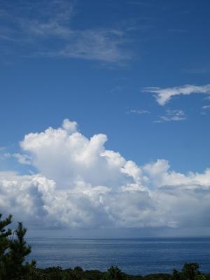140722-23=海fm松の木上