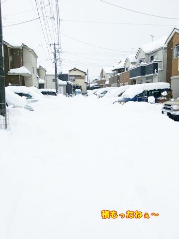 0215雪あそび