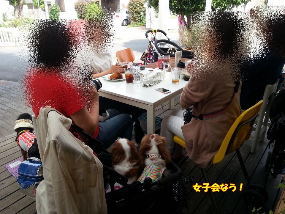 20140519_143528.jpg
