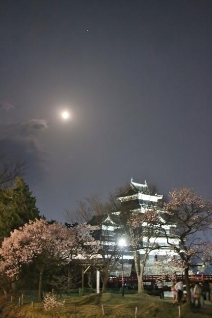 20140416松本城3