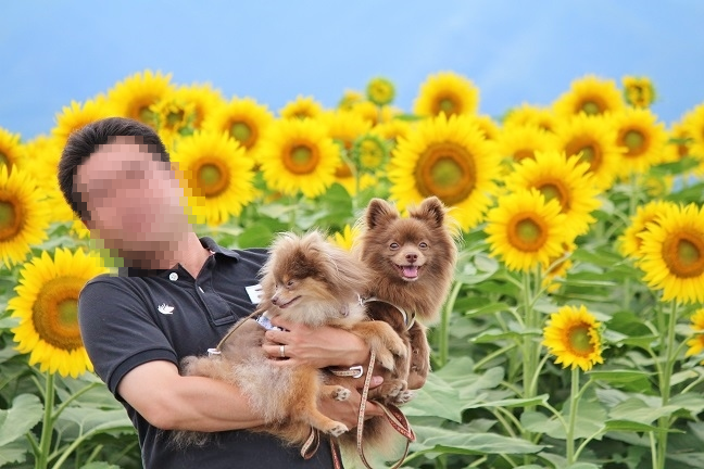 201408042.png