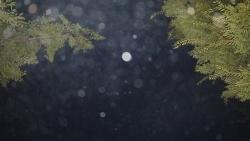 20140802盆踊3(GF2)