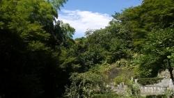 20140811縁切寺8