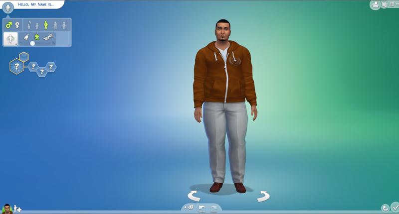 Sim4-1.jpg