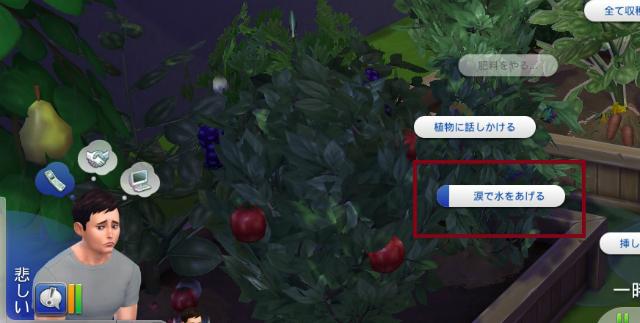 Sims4c21.jpg