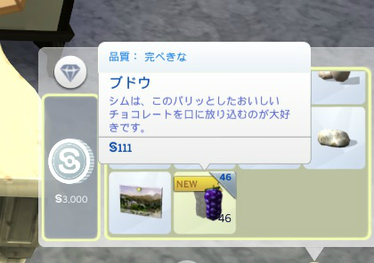Sims4c3.jpg