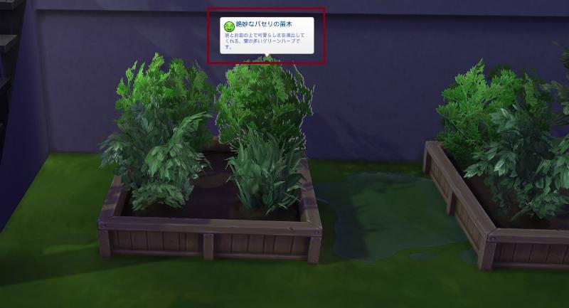 Sims4ken23.jpg
