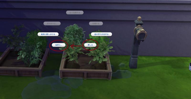 Sims4ken24.jpg