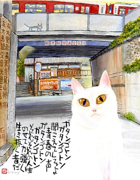 石切高架下の野良猫2