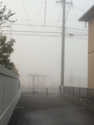 すごい霧~!!