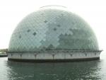 南港に浮かぶゴミ