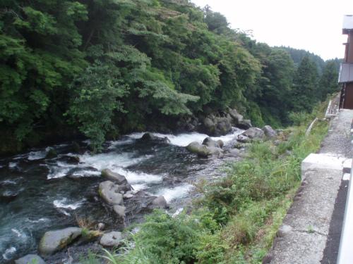 涼しげな川