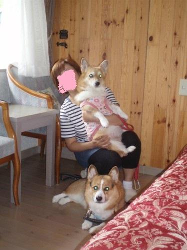 母と娘と息子