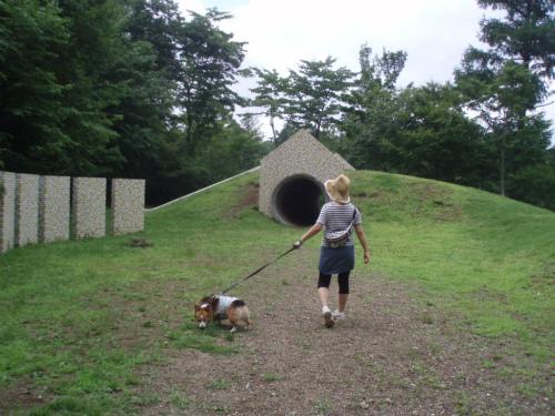 トンネルだ