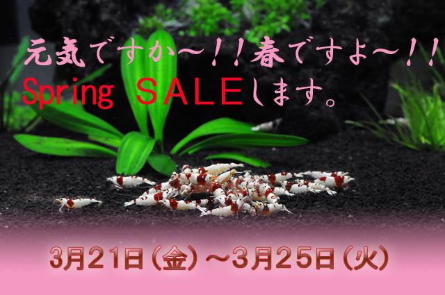S-sale.jpg