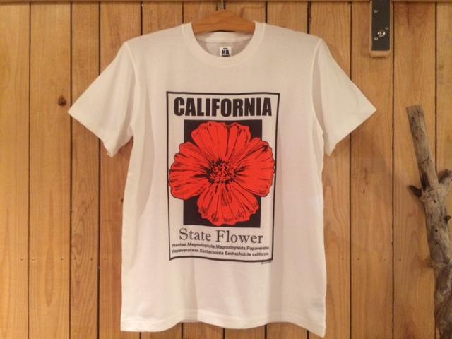 HRM カリフォルニアT1