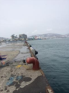 IMG_1479小樽港
