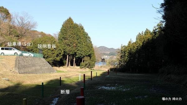 IMG_9927.jpg