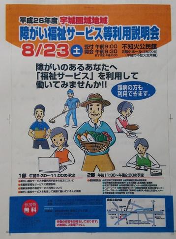 DSC_0735_blog.jpg