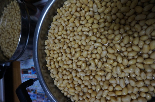 水に浸した大豆
