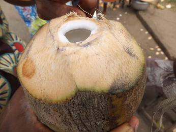 ココナッツジュースを飲む