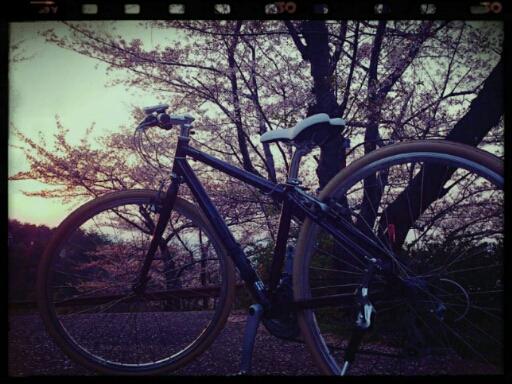 自転車に乗って~♪