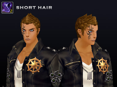 2014_0320_preview_2shorthair_man.jpg