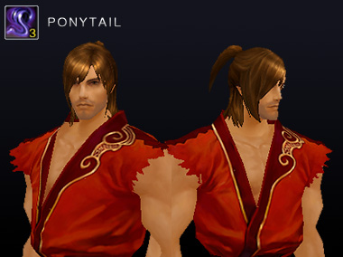 2014_0320_preview_3ponytail_man.jpg
