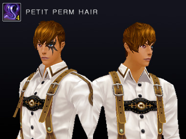 2014_0320_preview_4petitperm_man.jpg