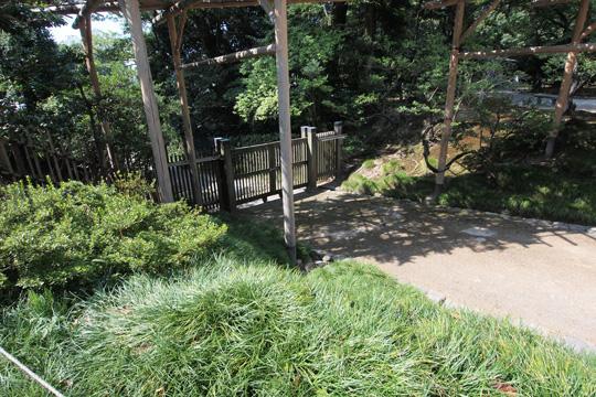 20130818_kenrokuen_garden-36.jpg