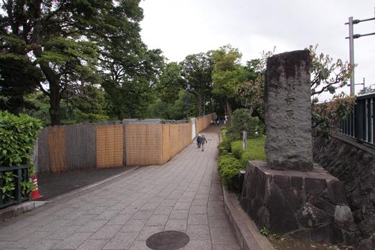 20140506_odawara_castle-01.jpg