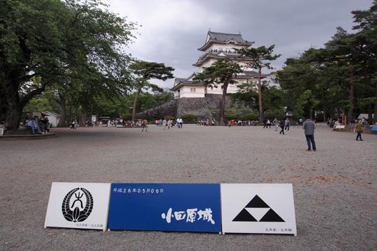20140506_odawara_castle-02.jpg