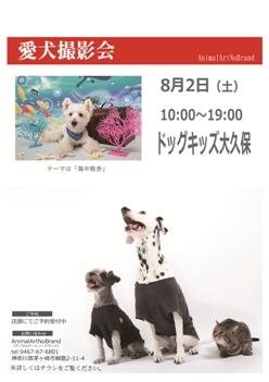 8月2日(土)ドッグキッズ大久保様 A4ポスター