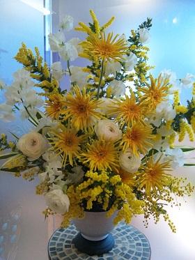 きいろいお花