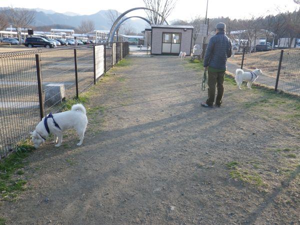2014.3.23 談合坂SA5